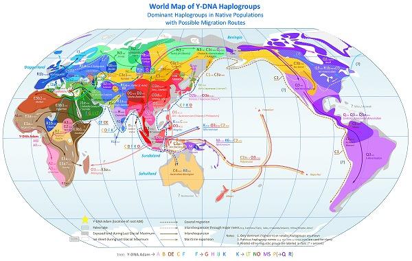 World_Map_of_Y-DNA_Haplogroups-s